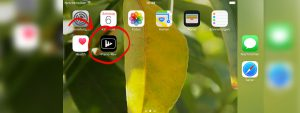 17 05 08 web app ios